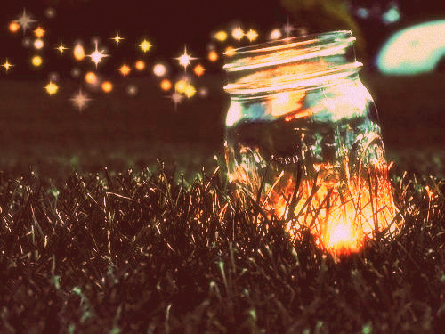 catching fireflies