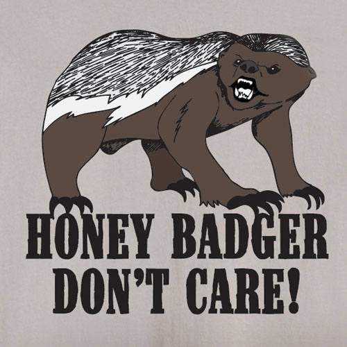 Ferocious honey badger